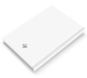 Белая книга_обложка_02